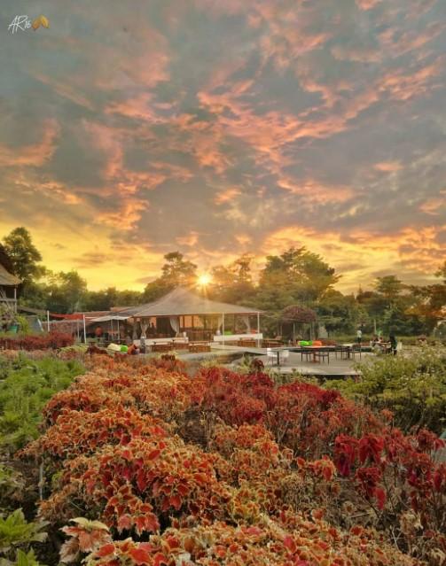taman bunga layla camp hulu cai