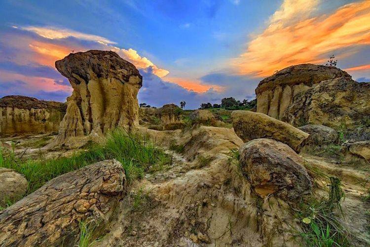 bukit jamur gresik