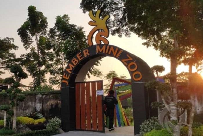 jember mini zoo