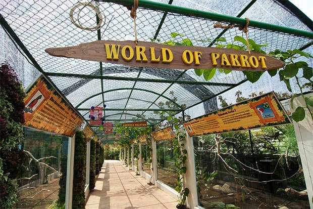 eco green park world of parrt